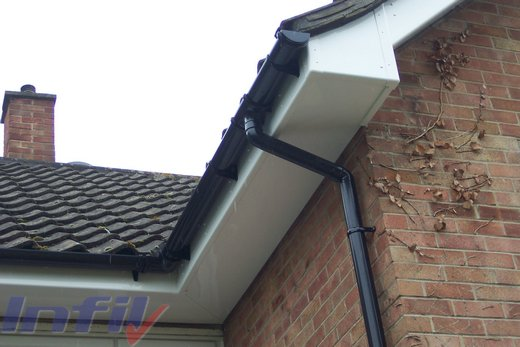 Prevent Birds Nesting Under Roof Tiles Top Tips For